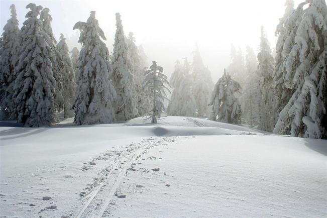 snieznik3.jpg