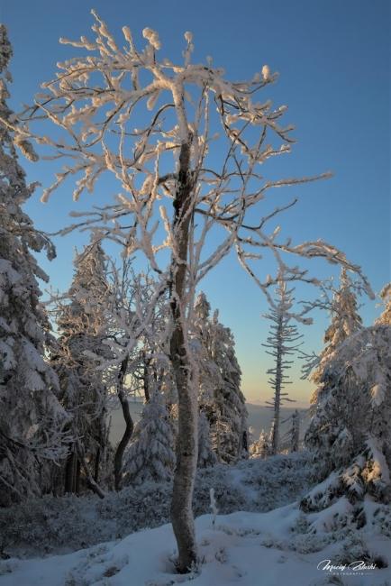 snieznik_2020_21_zima22.JPG