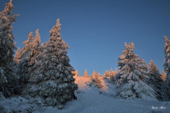 snieznik_2020_21_zima26.JPG