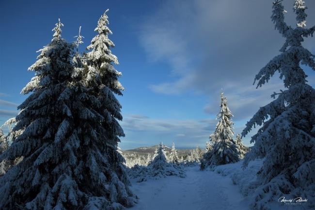 snieznik_2020_21_zima35.JPG