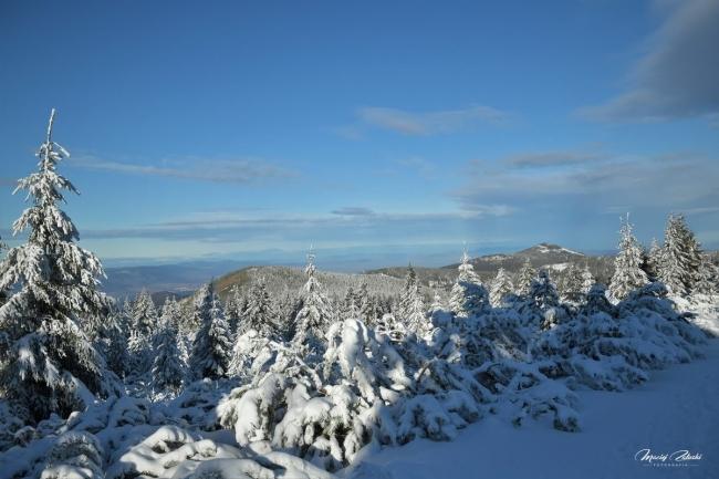 snieznik_2020_21_zima36.JPG