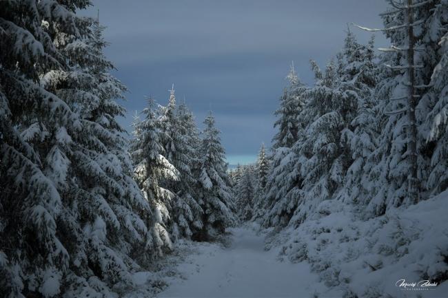 snieznik_2020_21_zima40.JPG