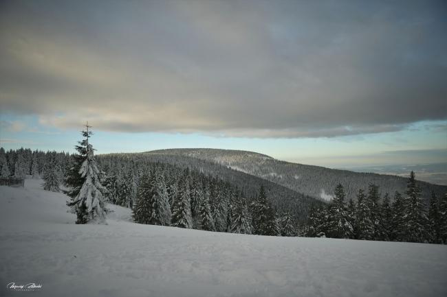 zima2019_27.jpg