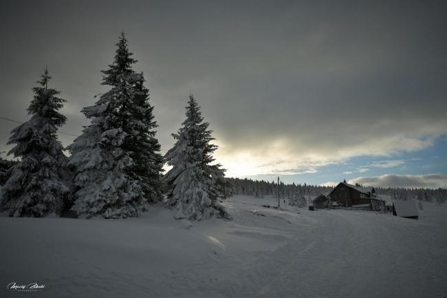 zima2019_29.jpg