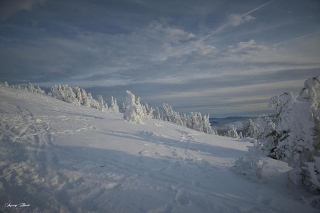 zima2019_3.jpg